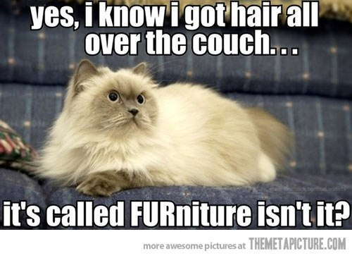 furniture-as-is