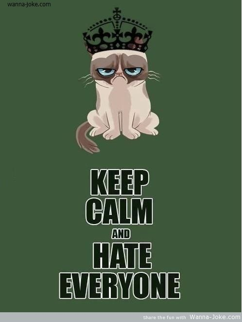 grumpy-cat-quote