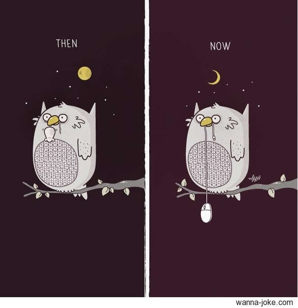 then-now-owls