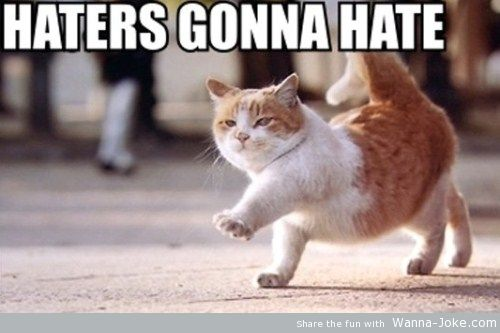 cat-haters-gonna-hate