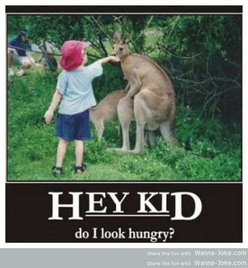 do-i-look-hungry