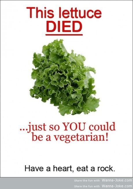 for-vegetarians