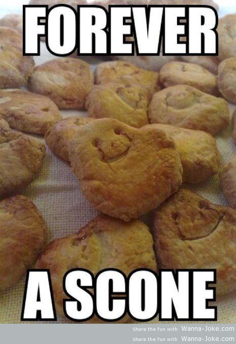 forever-a-scone