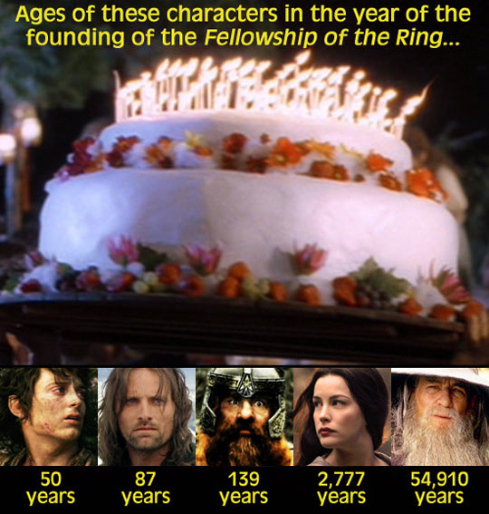 funny-Fellowship-Ring-ages-characters-years