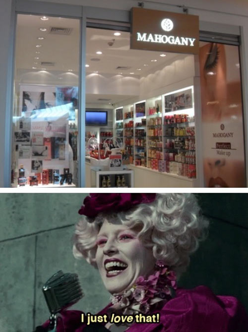 funny-Mahogany-shop-Hunger-Games