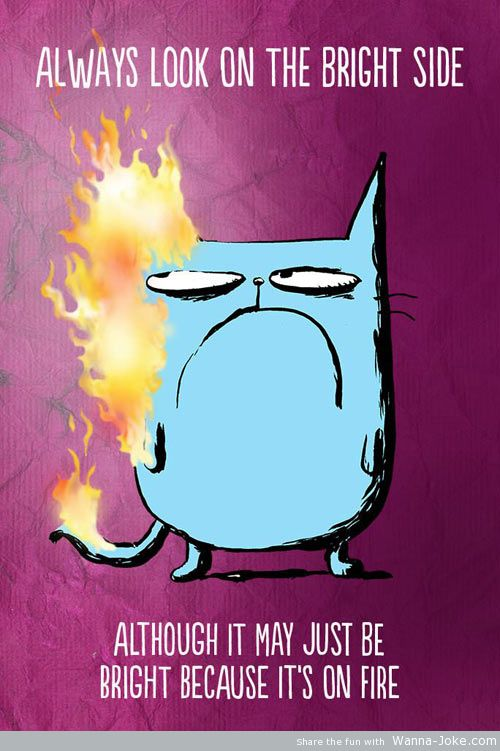 funny-cat-fire-angry