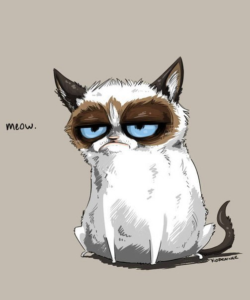 funny-grumpy-cat-picture-meow