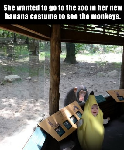 funny-picture-little-girl-in-banana-costume