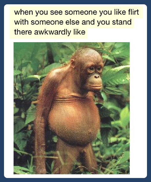 funny-pictures-animals-monkey-when-you-like-somebody