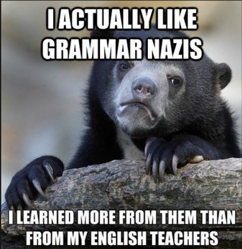 funny-pictures-bear-grammar-nazi