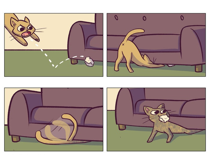 funny-pictures-cat-clean-under-couch