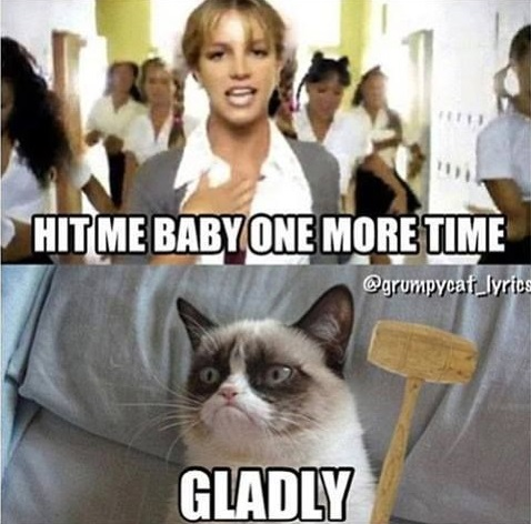 funny-pictures-grumpy-cat-vs-britney-spears
