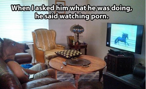 funny-pictures-horse-watching-porn