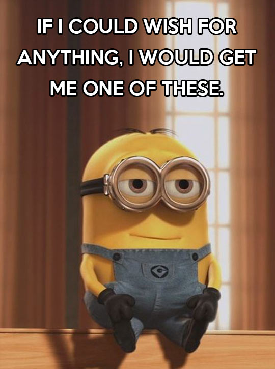 funny-pictures-minion-wish