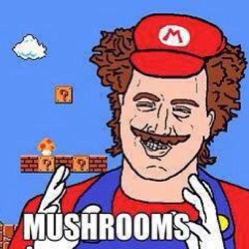 funny-pictures-mushrooms