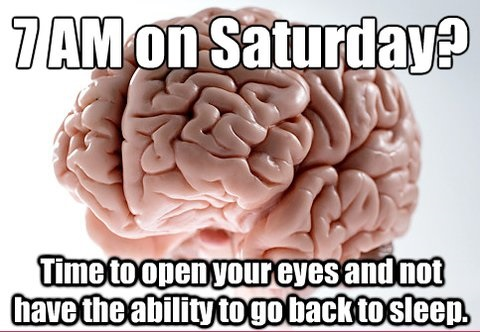 funny-picures-brain-not-sleeping
