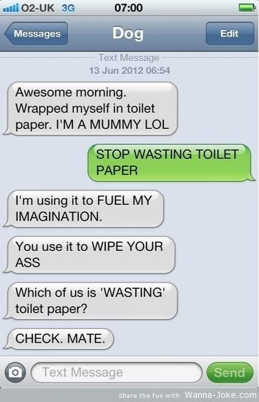 funny-text-dog-toilet-paper-mummy