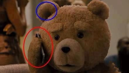 funny-pictures-bear-fuck-logic
