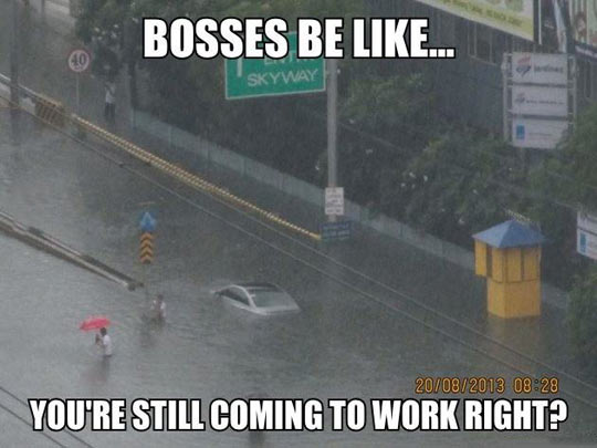 funny-pictures-bosses-be-like-rain