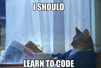 funny-pictures-cat-i-should-leartcode