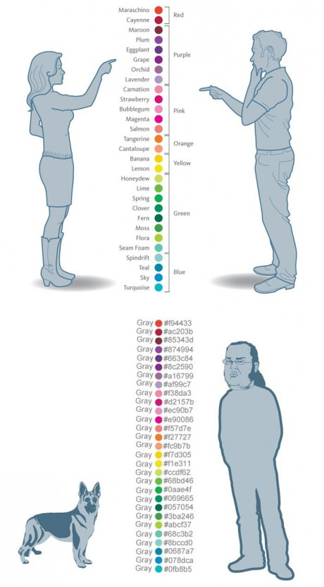funny-pictures-colors-men-women-dogs-coders
