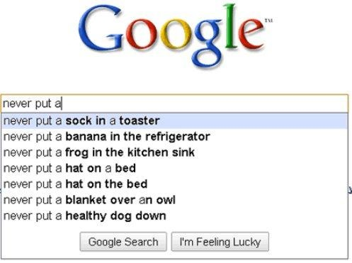 funny-pictures-google-never-put-a-sock-in-a-toaster