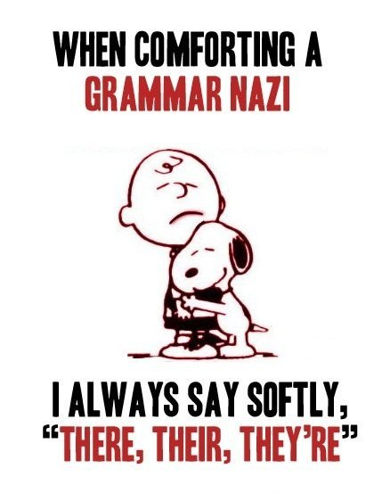 http://wanna-joke.com/wp-content/uploads/2013/08/funny-pictures-grammar-nazi-there-their-theyre.jpg