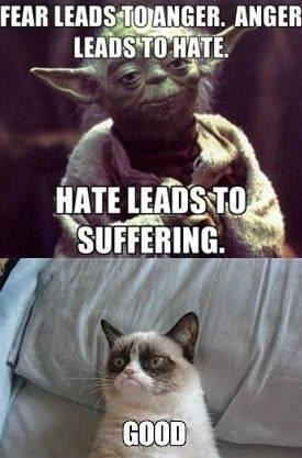 funny-pictures-grumpy-cat-good