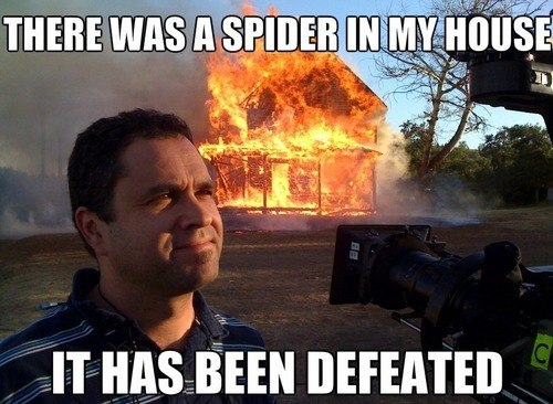 funny-pictures-it-was-a-spider