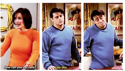 funny-pictures-joey-how-can-you-not-care