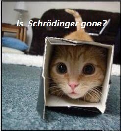 funny-pictures-schrodinger-cat
