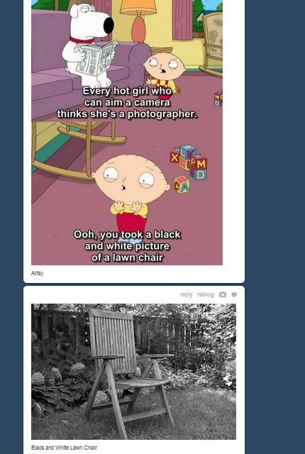 funny-pictures-stewie-on-photographers