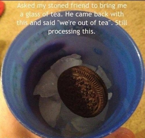 funny-pictures-stoned-friend-tea