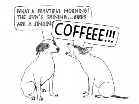 funny-picture-morning-coffee-beautiful