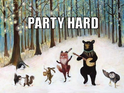 funny-pictures-animals-party-hard