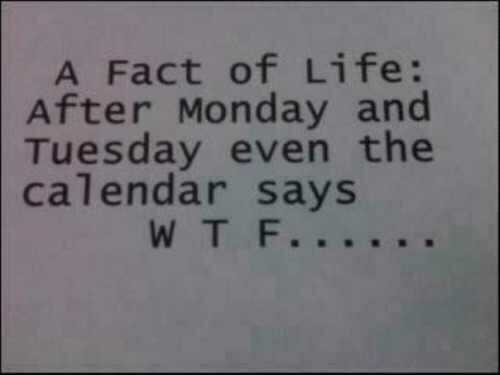 funny-pictures-calendar-says