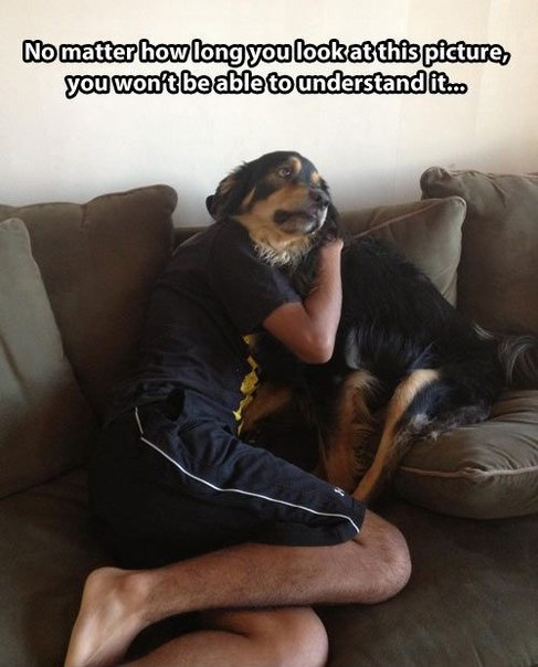 funny-pictures-dog-guy-hugging