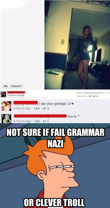funny-pictures-garbage-grammar-nazzi-troll