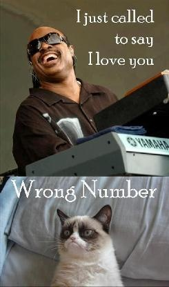 funny-pictures-grumpy-cat-wrong-number