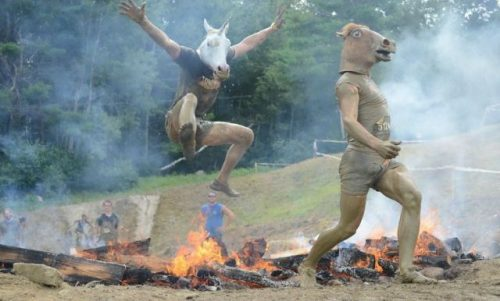 funny-pictures-horses-heads-fire