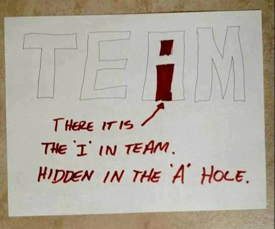 funny-pictures-i-in-a-team