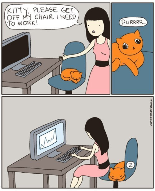 funny-pictures-kitty-get-off-my-chair