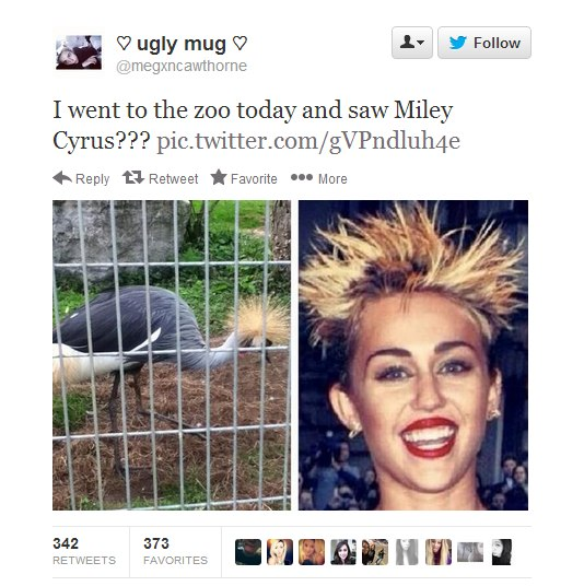 funny-pictures-miley-cyrus-zoo