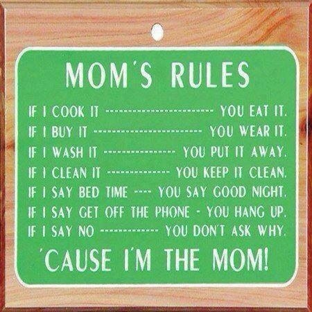 funny-pictures-moms-rules