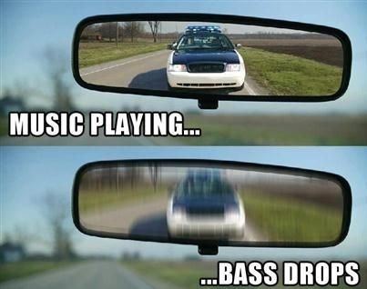 funny-pictures-music-playing-bass-drops