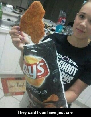 funny-pictures-one-big-chip