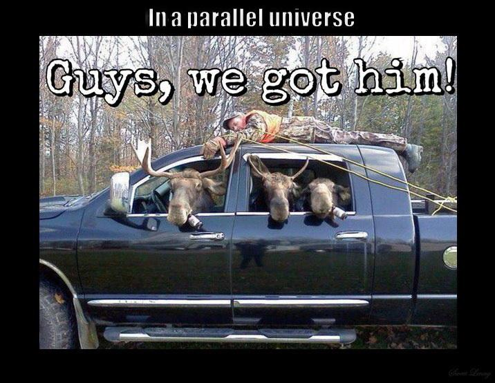 funny-pictures-parallel-universe