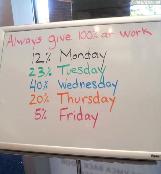 funny-pictures-percentage-work-days
