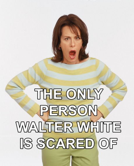 funny-pictures-person-walter-white-is-scared-of
