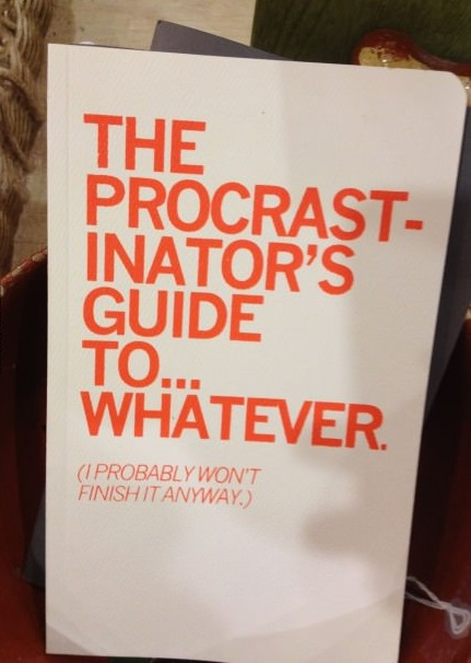 funny-pictures-procrastionation-guide-to-whatever